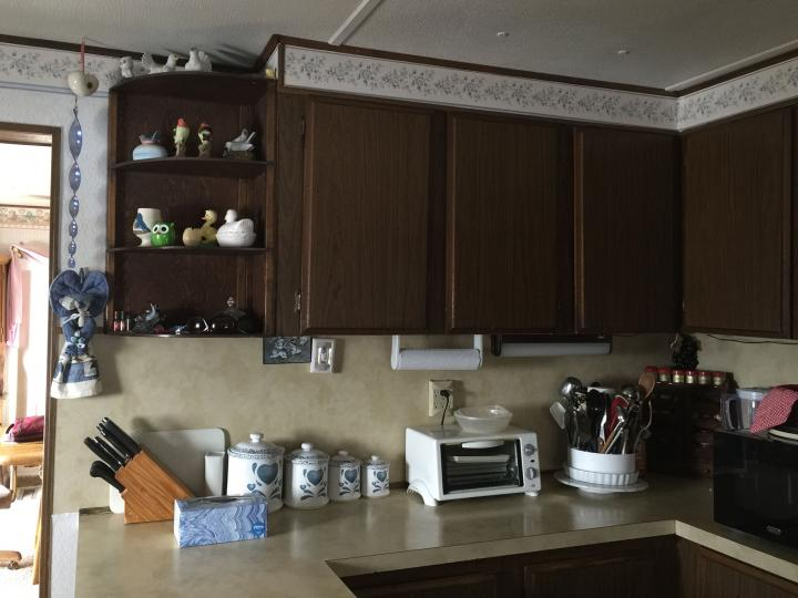 cabinets and countertop before remodel